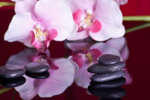 massage-599476__340